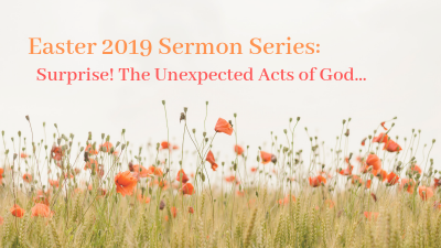 Surprise! The Unexpected Acts of God: An Amazing Detour